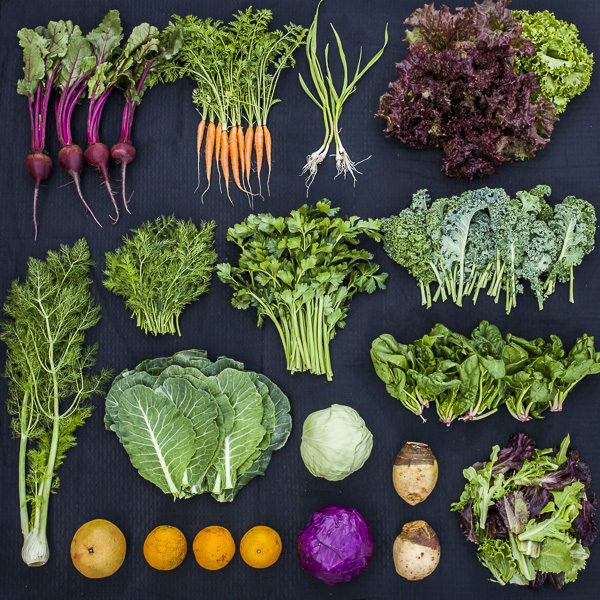 CSA Box Week of March 10th