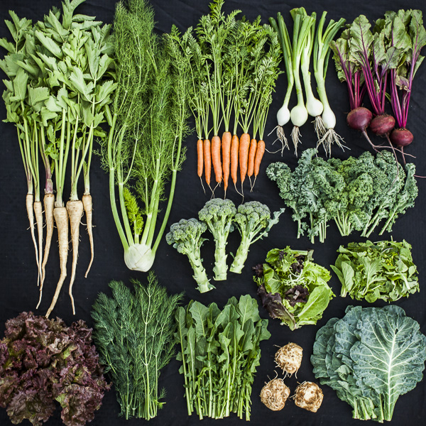 CSA Box Contents Week of April 21st