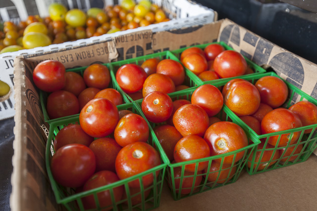 June also means...tomatoes! Photo by Scott David Gordon