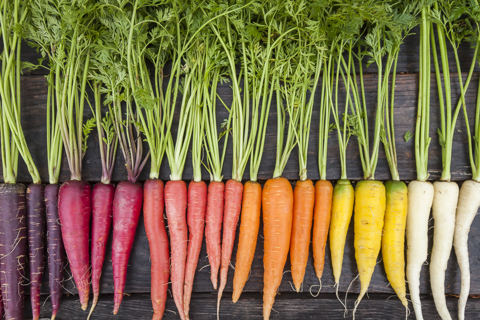 Home - Johnson's Backyard Garden