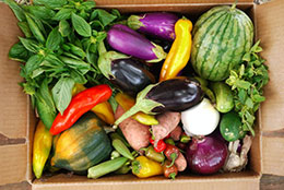 How Do I Identify, Cook, And Properly Store The Vegetables In My Share?